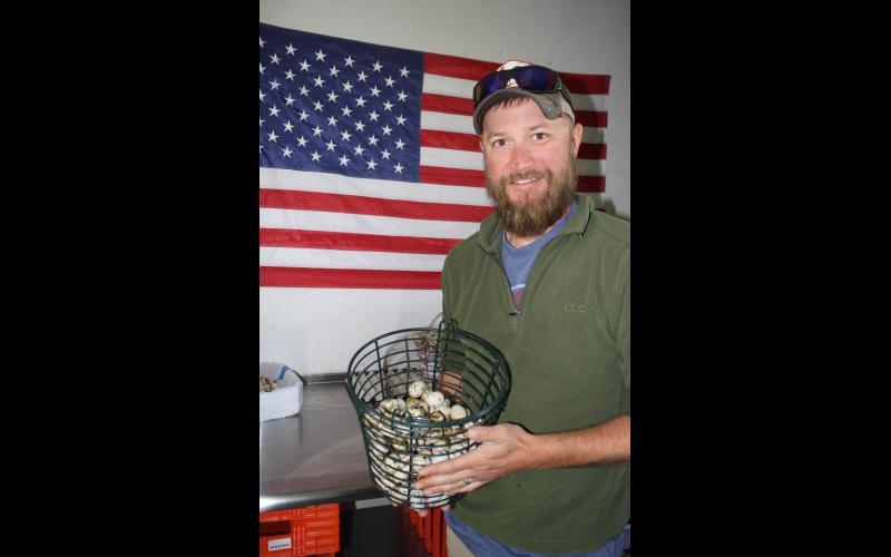 Lauerman Farms also sells quail eggs